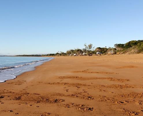 Endless-Beaches-Equal-Perfect-Dog-Travel-at-Carmila