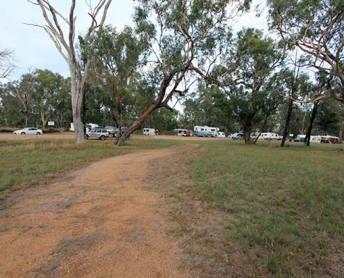 Terramungamine Reserve near Dubbo