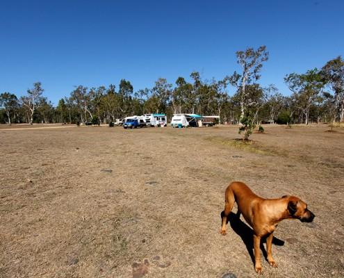 camping-at-atherton-queensland
