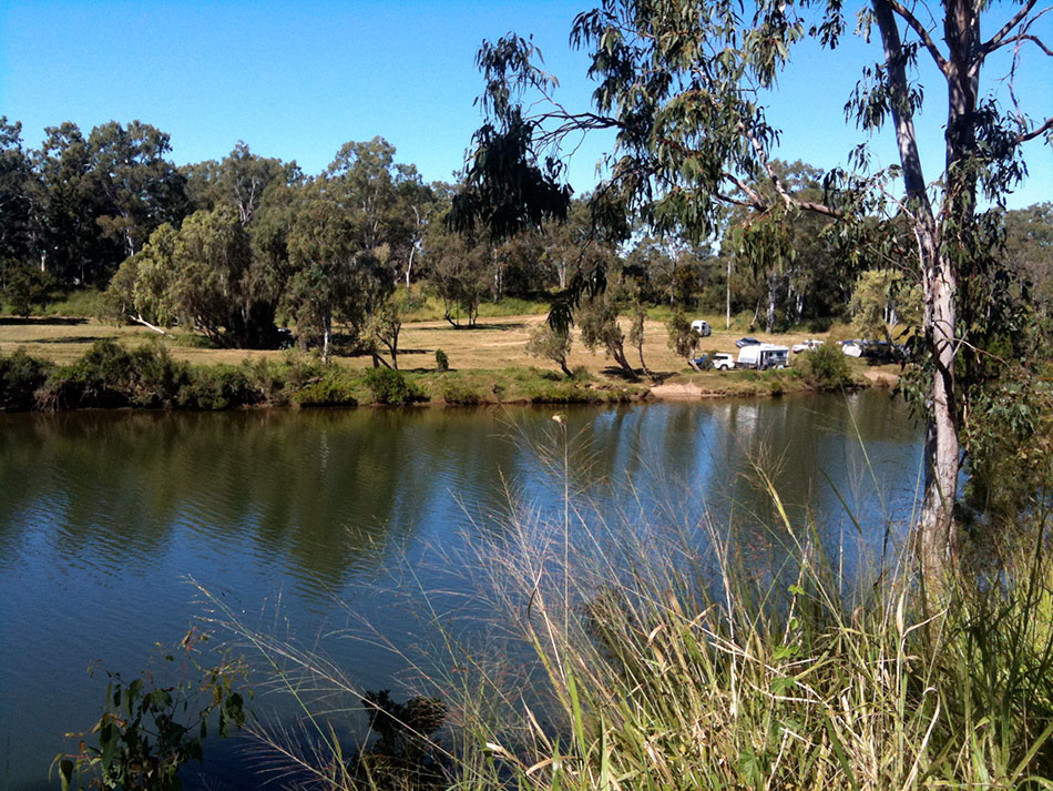 Calliope-River-Camping-Grounds