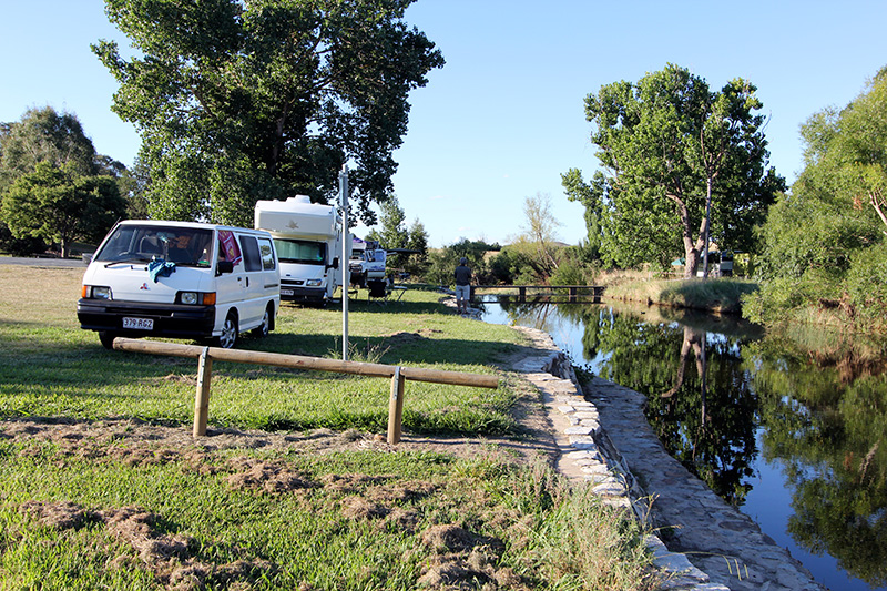 Dog Friendly Camping at Gunning Barbour Park