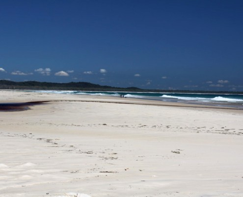 Dog-Travel-Heaven-at-Stradbroke-Island