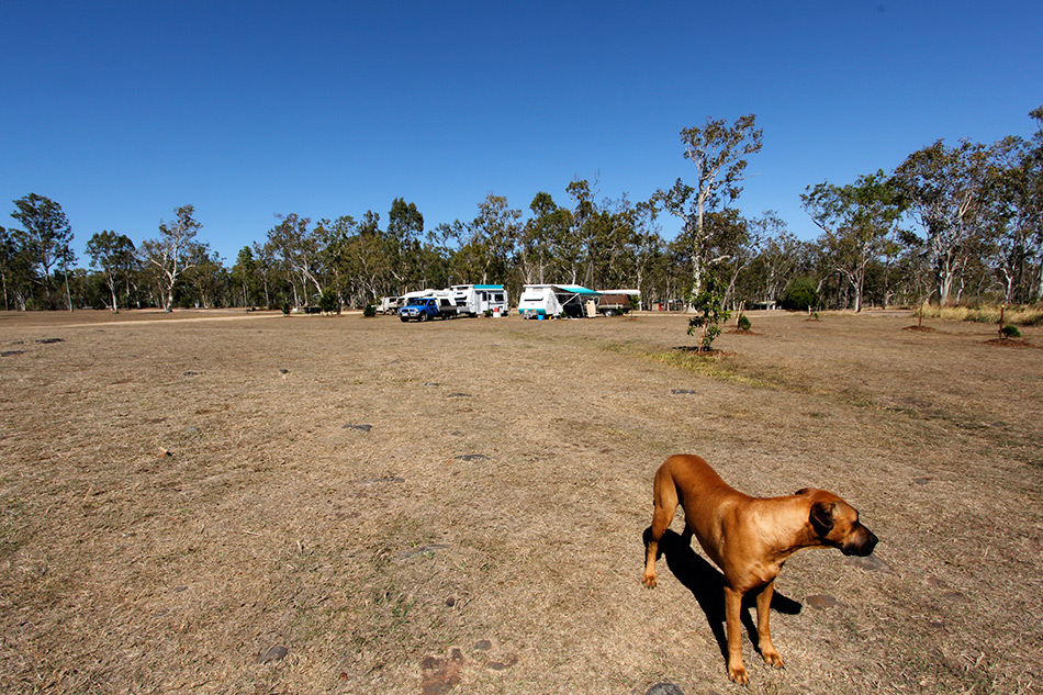 camping-at-atherton-queensland