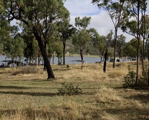 eungella-dam-dog-travel-friendly-camping-area